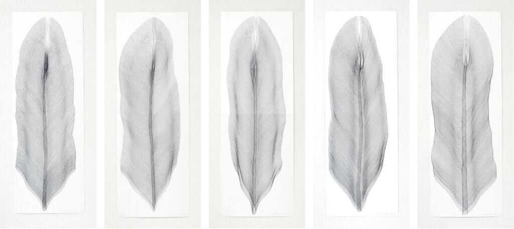 """""""Wanderfeder"""", 2011, Bleistift auf Papier, je 168.2 x 59.4 cm"""