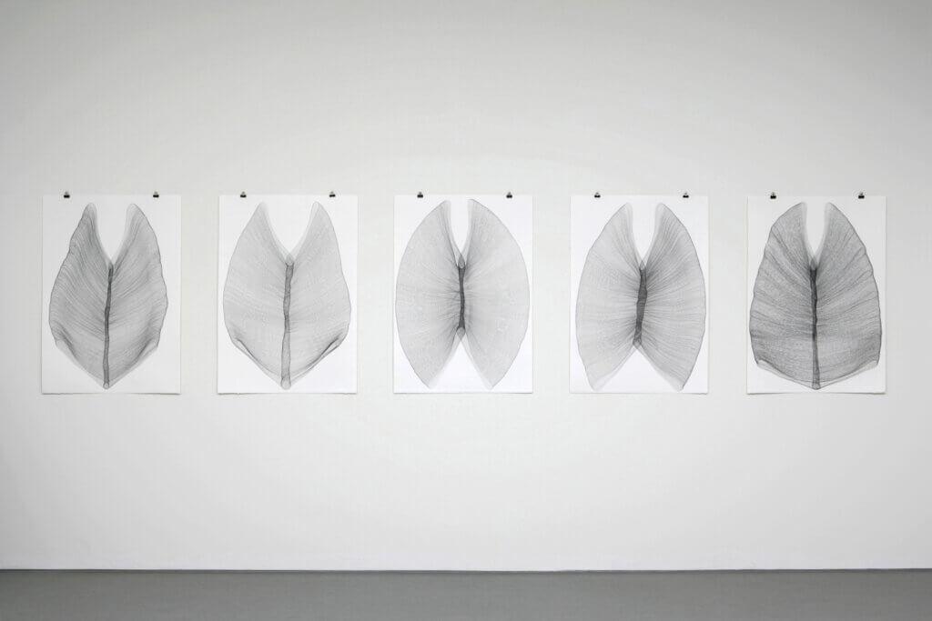 """""""Gebannt"""", 2009, 5-teilig, Bleistift auf Büttenpapier, je 105 x 75 cm"""
